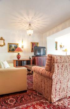Couch und Couchsessel Wohnzimmer