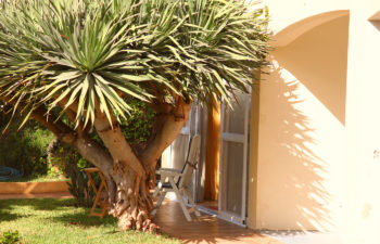 Barrierefrei zugänglicher Garten vom studio 601