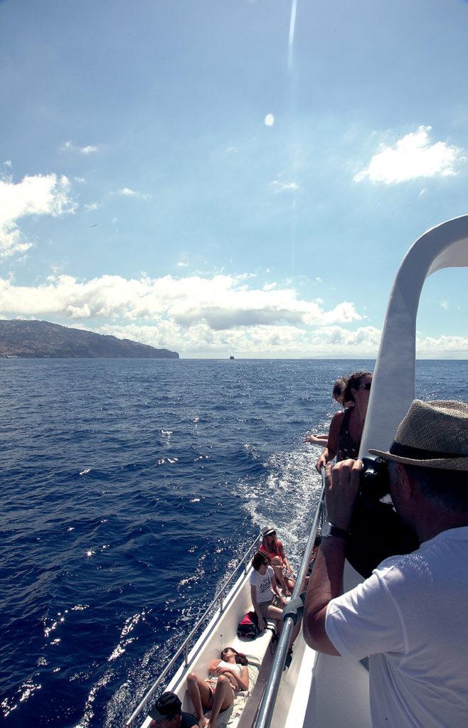 Mann mit Kamera fotografiert vom Boot aus Delfine im Meer vor Madeira